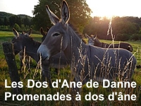 Association Les Dos d'Ane de Danne